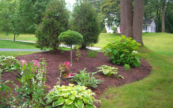 Halfmoon, Rexford, Landscaping Company Capital District